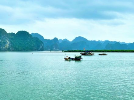 Vietnam Private Tour - Halong Bay