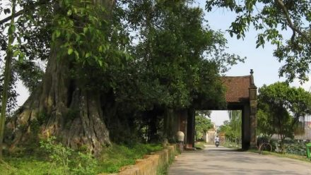 Duong Lam Ancient Village - Attractions around Hanoi